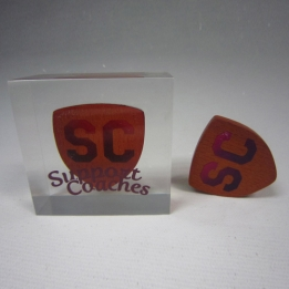 Acrylic / Lucite Embedments